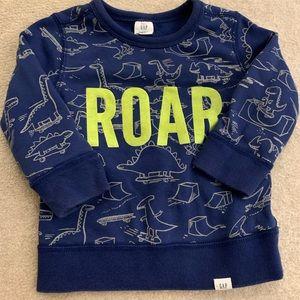Toddler dinosaur sweatshirt
